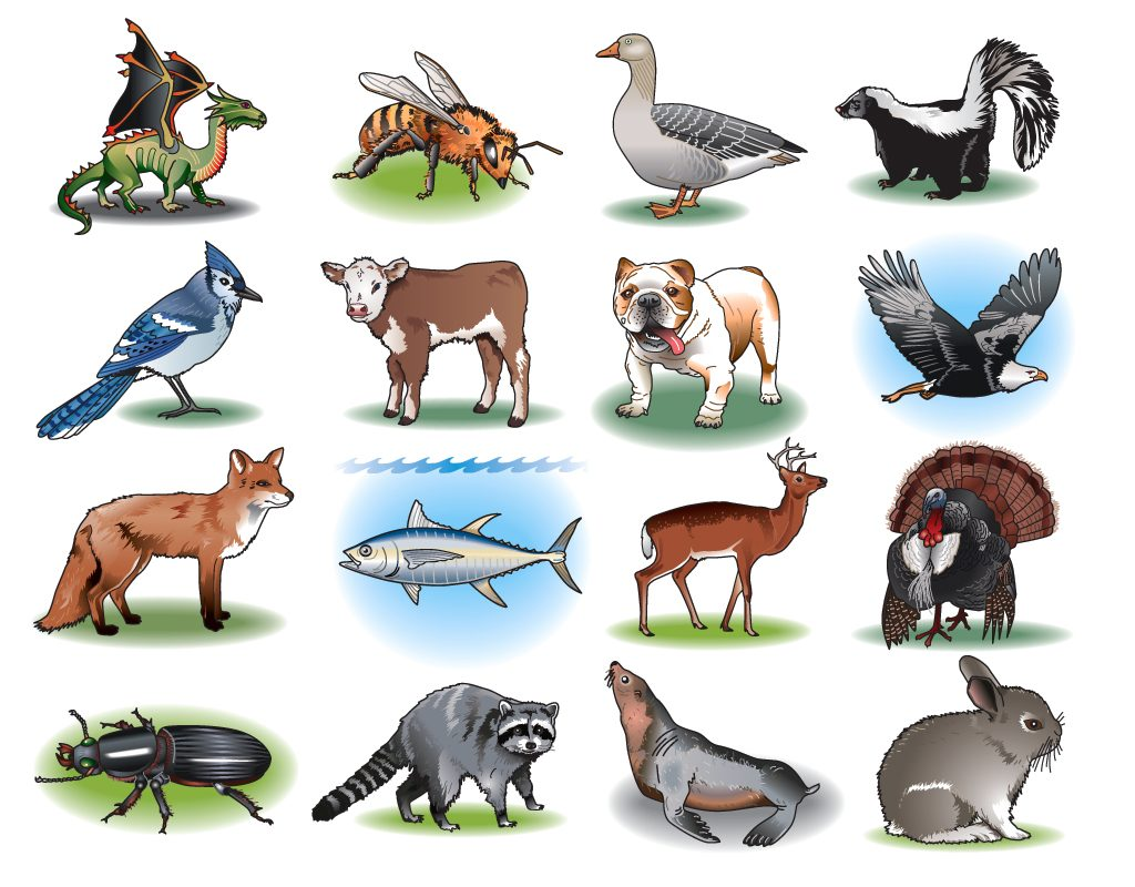 Animal-Samples