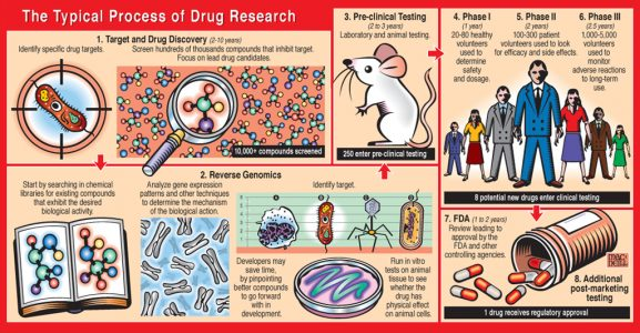 Drug Research Process Diagram