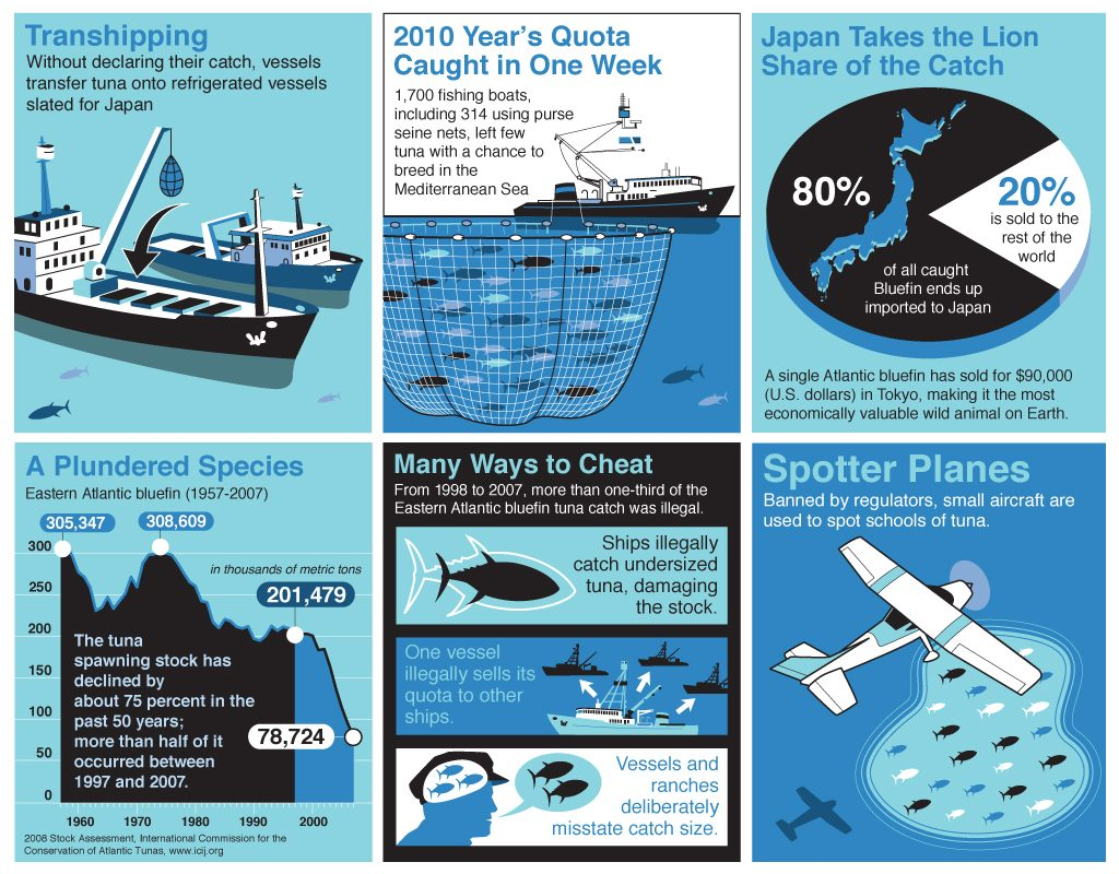 Tuna-Catch-InfoGraphics